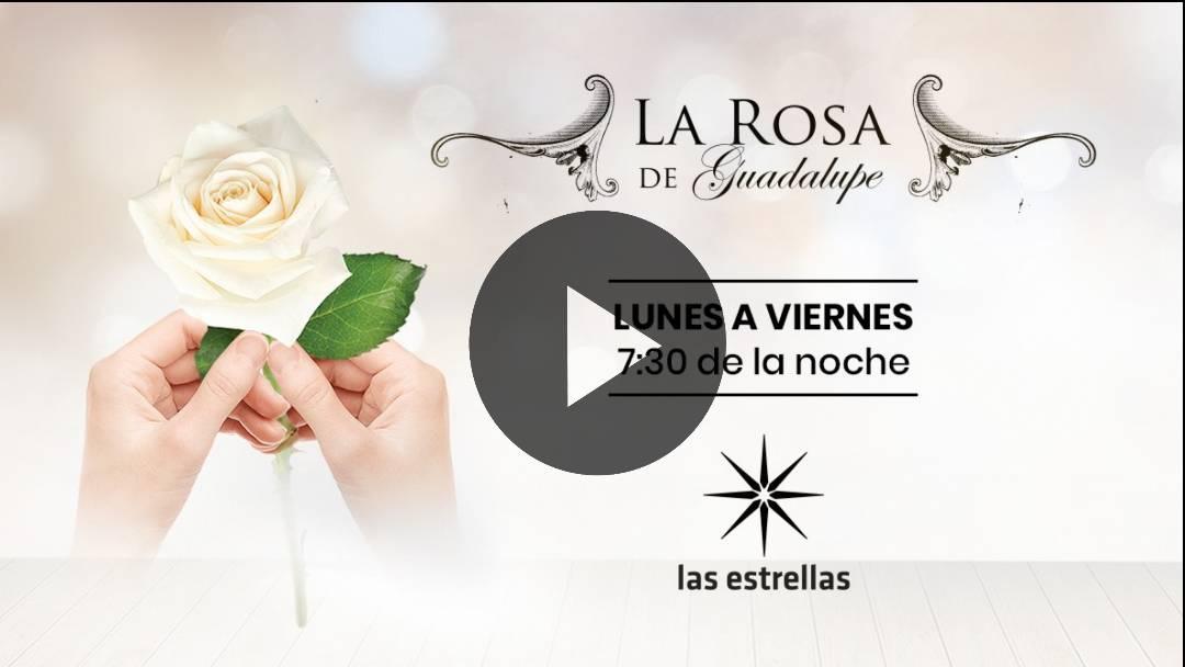 EN VIVO La Rosa de Guadalupe: ¿Cómo ver los capítulos completos de la serie mexicana? AQUI EN DIRECTO LA ROSA DE GUADALUPE; 🆕 LA ROSA DE GUADALUPE EN VIVO la rosa de guadalupe 2020 Video