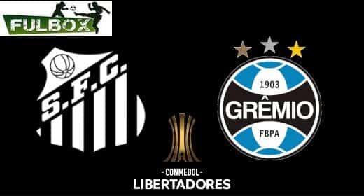 Santos vs Gremio EN VIVO Hora Canal Donde ver Cuartos