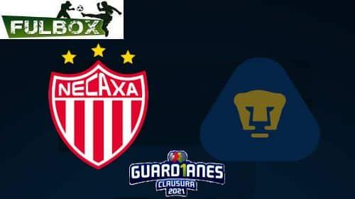 Necaxa vs Pumas EN VIVO Hora Canal Donde ver Jornada