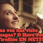 ESTRENO REPARTO: ¿Alguna vez has visto luciérnagas? O Have You Ever Seen Fireflies EN NETFLIX
